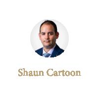 Shaun Cartoon