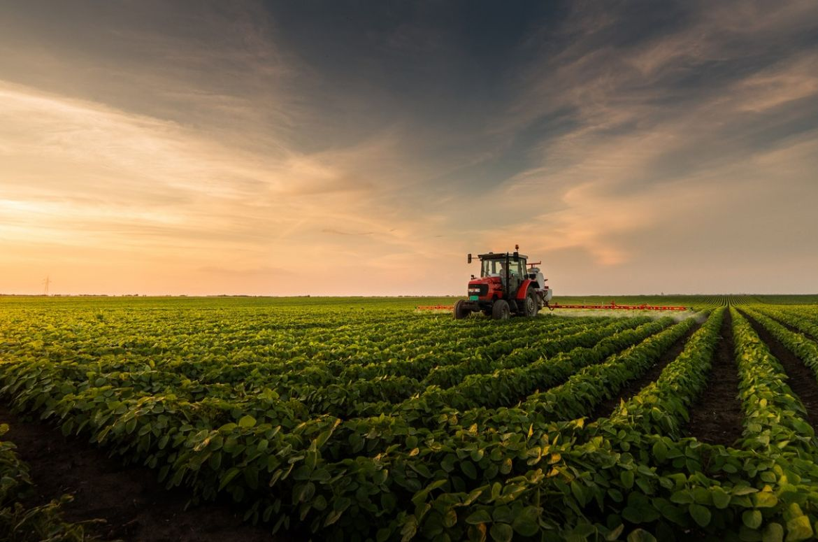 Agricultural chemicals in field