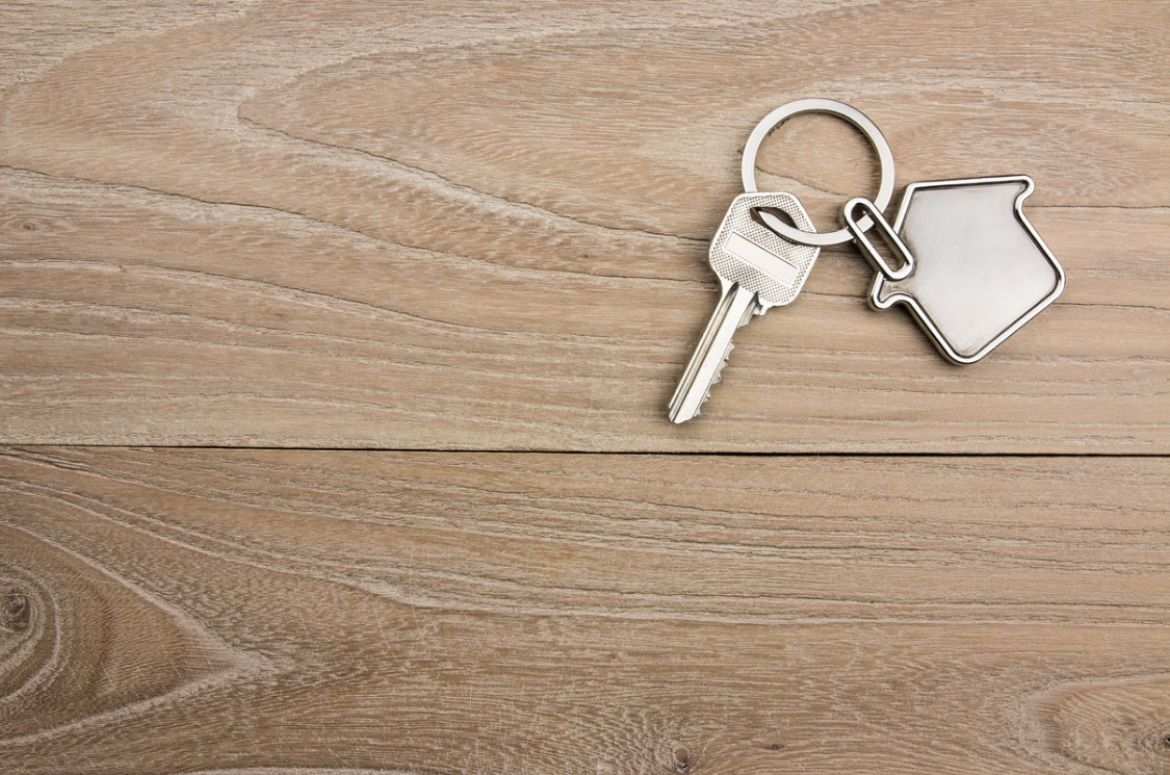 houseshaped key in the wood picture id630960456