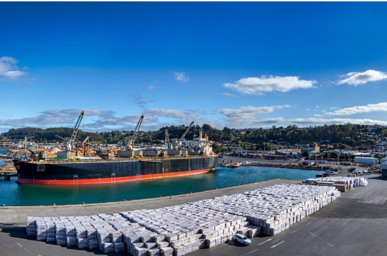 panoramic view of the port of burnie in tasmania australia picture id1220787146