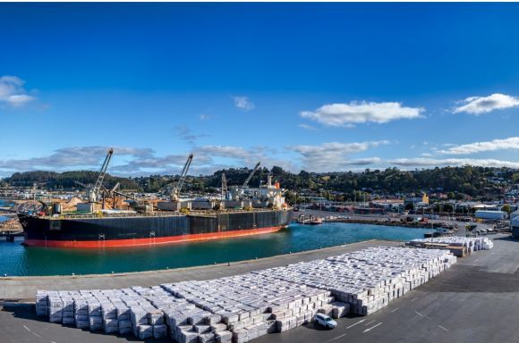 panoramic view of the port of burnie in tasmania australia picture id1220787146